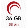 36 GB