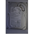 Seagate 120GB 2MB 7200rpm ATA100 ST3120213A Harddisk