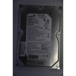 Seagate 250GB 8MB 7200rpm ATA100 ST3250824A Harddisk